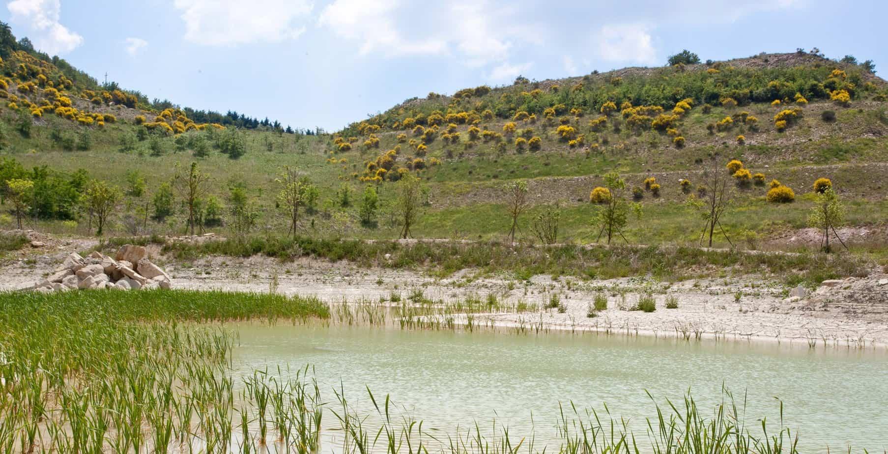 Una veduta dell'area in recupero ambientale della miniera di San Marco
