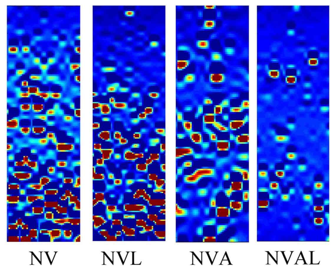 Le mappe di deformazione di mastici contenenti NV
