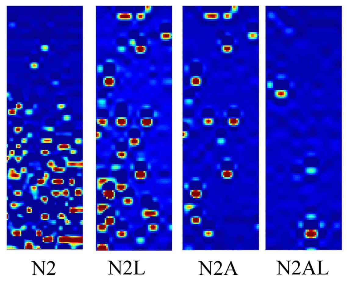 Le mappe di deformazione di mastici contenenti N2