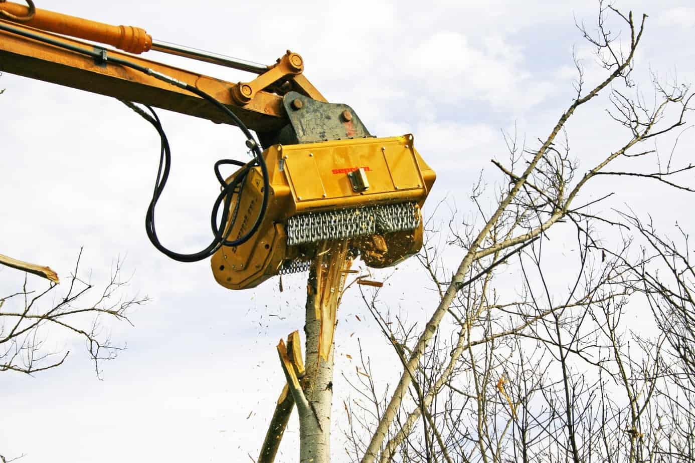 La trinciatrice BMS è una attrezzatura potente per le aree di difficile accesso