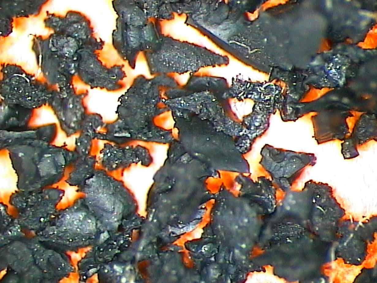 Un'immagine di polverino da PFU acquisita con stereomicroscopio (ingrandimento 2,5X)