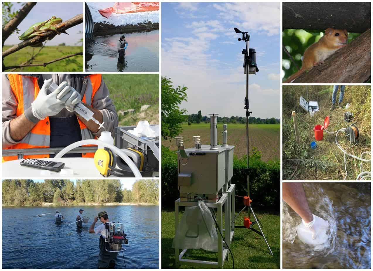 Le attività di rilievo condotte nell'ambito dei monitoraggi ambientali