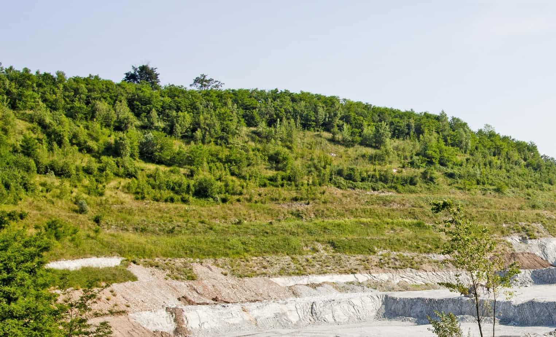 La miniera di Sasso Poiano nel comune di Caravate (VA): un esempio di recupero ambientale contestuale all'escavazione