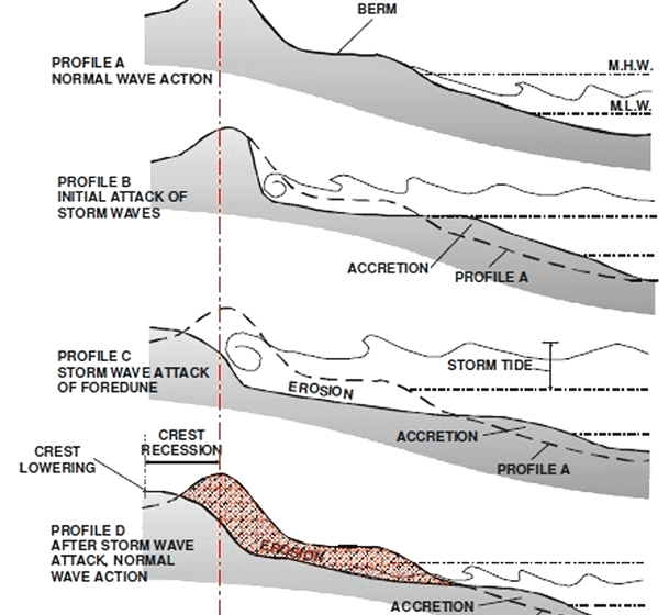 L'erosione da parte del moto ondoso