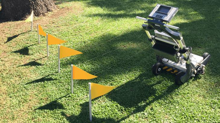 Attività di campo per l'ispezione dell'impianto radicale di un abete tramite georadar