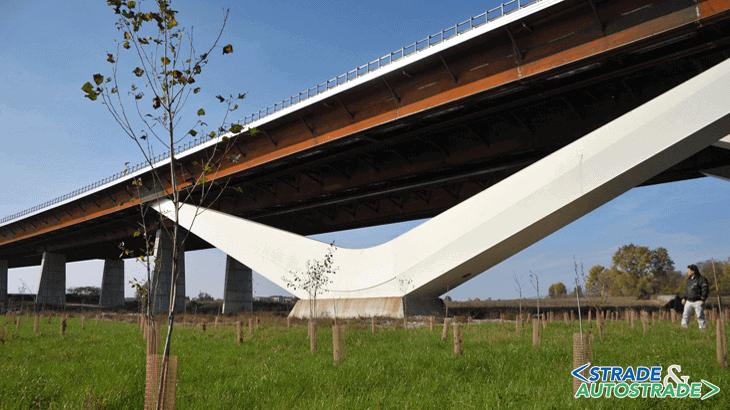 Nuove piantumazioni sotto il viadotto Lambro di A58-TEEM